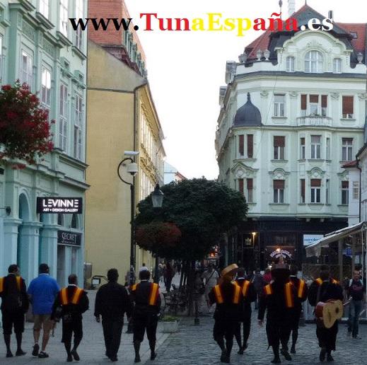 Tunas Universitarias, Tunas estudiantinas, Tuna España