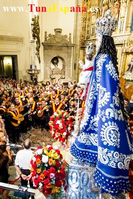 TunaEspaña, Catedral De Murcia, virgen de la fuensanta