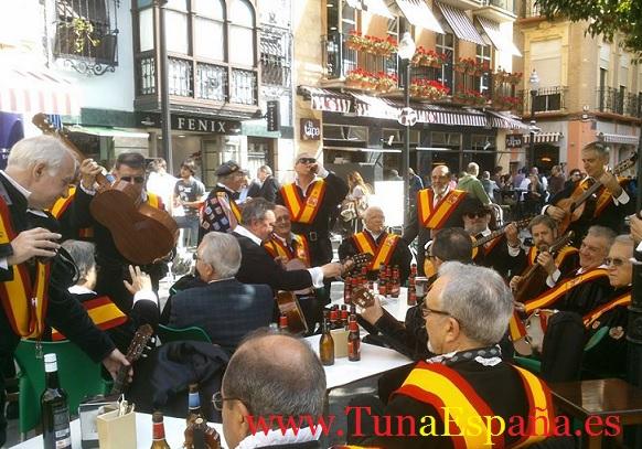 TunaEspaña, Juntamento 2014