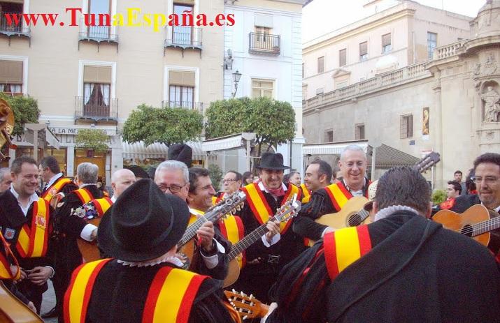 TunaEspaña, Tuna España, Cancionero Murcia, Canciones de tuna, Musica de Tuna, Don Lapicito, Tuna Medicina Murcia, Catedral Murcia