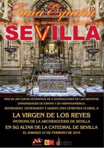 TunaEspaña,Catedral de Sevilla dism24